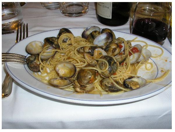 clamss.jpg